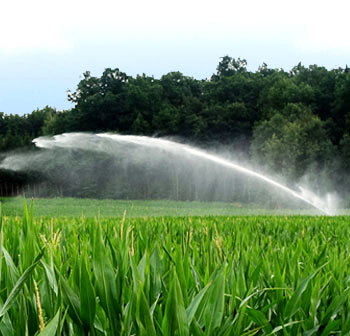 Irrigation technology for corn